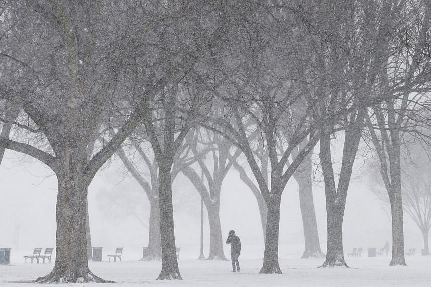 Blowing snow begins to pile up along the National Mall on Jan 21, 2014, in Washington, DC. -- PHOTO: AFP