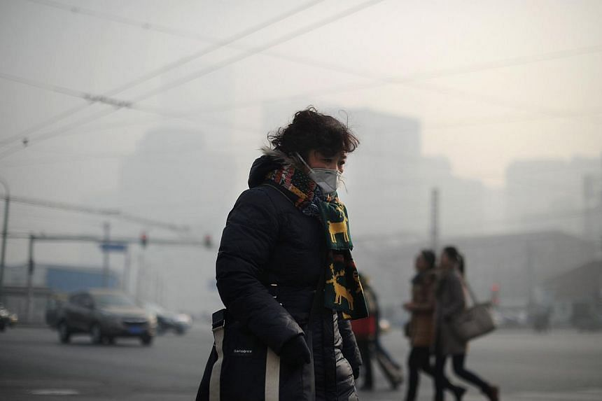 A woman wearing a face mask makes her way along a street in Beijing on Jan 16, 2014. Warnings of heavy smog over central and eastern China this week have prompted the country's weather forecaster to call for a ban on the fireworks traditionally let o