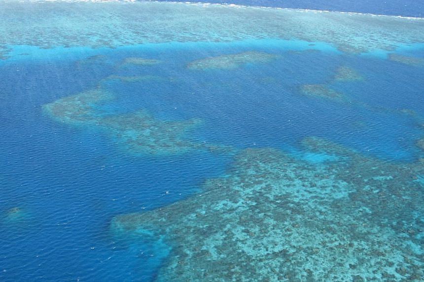 A file picture of coral reefs at Australia's Great Barrier Reef. A dumping permit clears the way for a major expansion of the port of Abbot Point. -- ST FILE PHOTO: TRACY QUEK