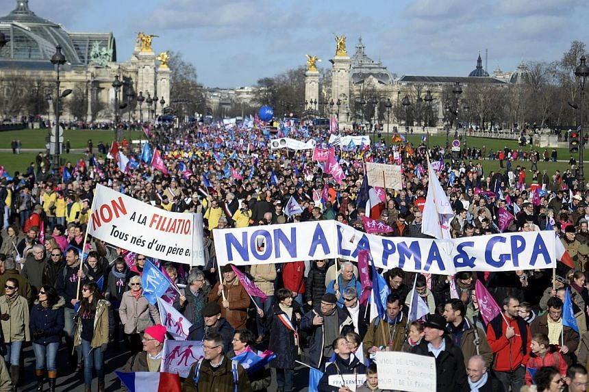 "Supporters of the ""La Manif Pour Tous"" (Protest for Everyone) movement demonstrate on the Invalides square in Paris, to defend their vision of the traditional family, on Feb 2, 2014. -- PHOTO: AFP"