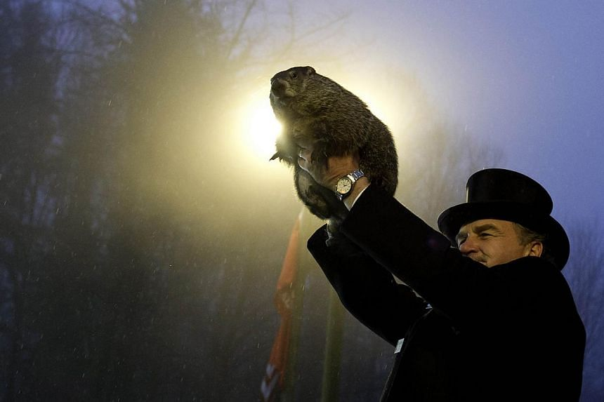 Groundhog handler John Griffiths holds Punxsutawney Phil after he saw his shadow predicting six more weeks of winter during 128th annual Groundhog Day festivities on Feb 2, 2014 in Punxsutawney, Pennsylvania. -- PHOTO: AFP