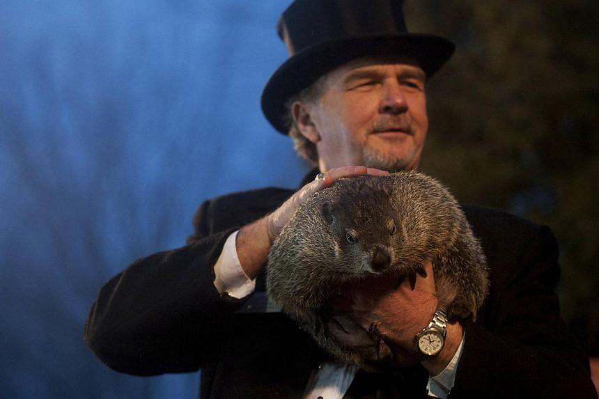 Groundhog co-handler John Griffiths holds up groundhog Punxsutawney Phil after Phil's annual weather prediction on Gobbler's Knob on the 128th Groundhog Day in Punxsutawney, Pennsylvania on Feb 2, 2014. Punxsutawney Phil, a famed United States (US) g