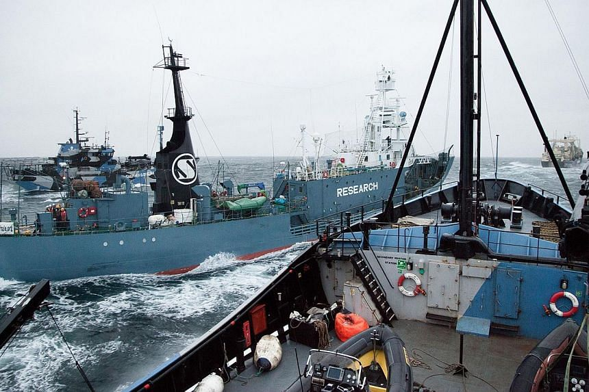 This handout image received and taken on February 2, 2014, by the Sea Shepherd Australia Ltd shows Yushin Maru changing course to overtake the Steve Irwin in the waters off Antarctica. Militant anti-whaling campaigners Sea Shepherd on February 2, 201