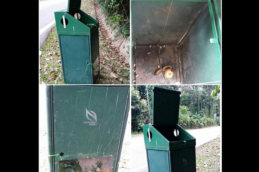 "The ""monkey-proof"" public litter bin that was allegedly converted into a monkey trap."