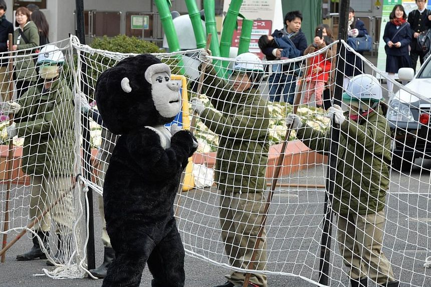 Zookeepers hold a net to capture an animal keeper dressed in a gorilla costume during a drill to practice what to do in the event of an animal escape at the Ueno zoo in Tokyo, on Thursday, Feb 6, 2014. Staff at a Japanese zoo chased a keeper in