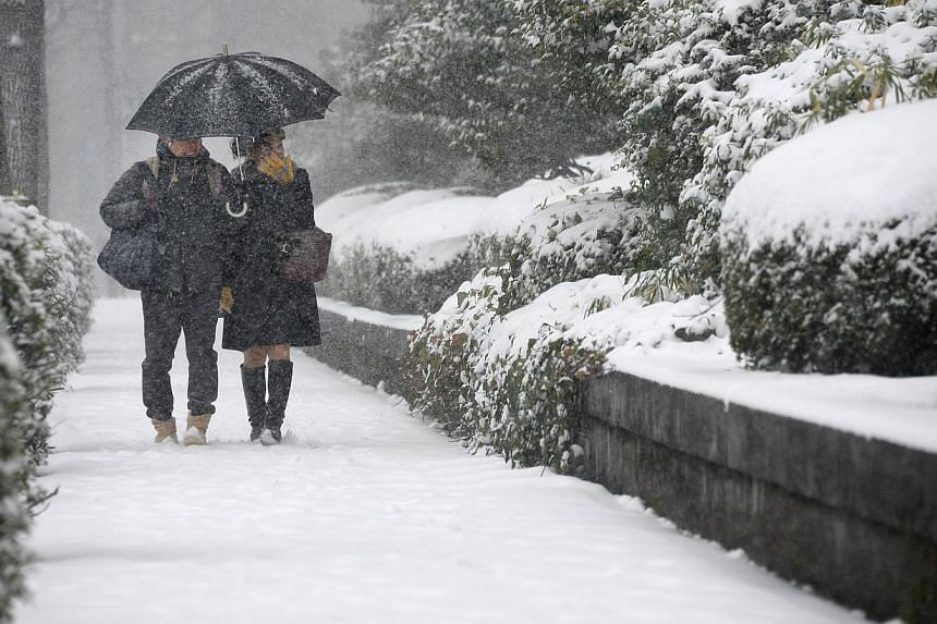 A young couple strolls around a park in downtown Tokyo under heavy snow on Feb 8, 2014. Heavy snow struck Tokyo and other areas across Japan, grounding nearly 300 flights and suspending some train services as the weather agency issued a severe storm
