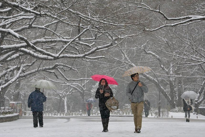 People walk in the snow at a park in Tokyo on Feb 8, 2014. Wide areas of Japan were hit by snowfall with central Tokyo covered with snow in the morning. -- PHOTO: AFP