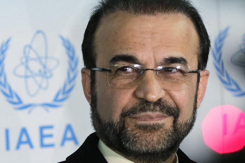 Iran's ambassador to the International Atomic Energy Agency (IAEA) Reza Najafi attends a news conference at the headquarters of the IAEA in Vienna, Dec 11, 2013. Iran agreed on Sunday seven more 'practical steps' with the United Nations nuclear watch
