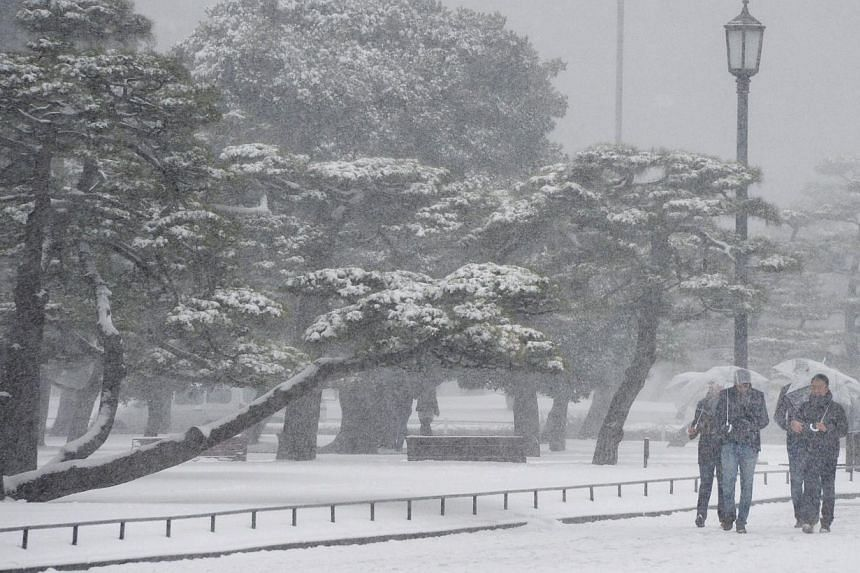 People walk in a park in downtown Tokyo under heavy snow on Feb 8, 2014. The heaviest snow in decades in Tokyo and other areas of Japan has left at least five dead and 600 injured across the country by early Sunday, reports said. -- PHOTO: AFP