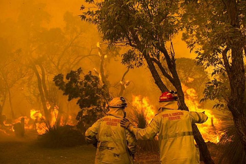 Firefighters battle flames during wildfires in Banjup, a suburb of Perth, Western Australia, on Feb 3, 2014. At least 20 homes have been razed in southeastern Australia in the worst fire conditions seen since a deadly 2009 inferno which killed 173 pe
