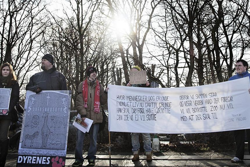 Some 20 people demonstrate outside Copenhagen Zoo against the killing and of a perfectly healthy young giraffe named Marius on Feb 9, 2014, despite an online petition to save it signed by thousands of animal lovers. -- PHOTO: AFP