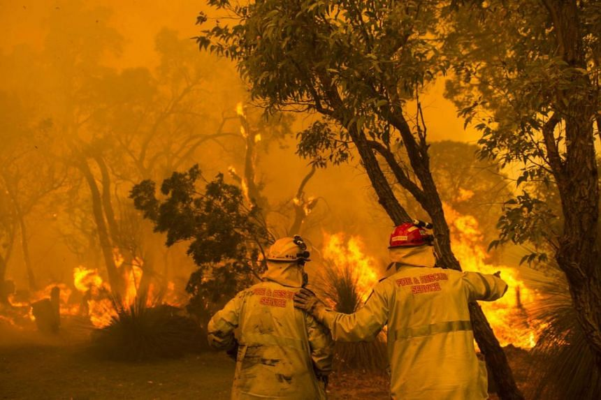 Firefighters battle flames during wildfires in Banjup, a suburb of Perth, Western Australia, Feb 3, 2014.Most bushfires raging in Australia were downgraded from emergency levels Tuesday as crews battled to get the upper hand on blazes that have