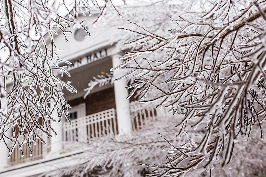 A tree is coated in ice outside a home after a rare winter ice storm swept across the South, on Feb 12, 2014 in Summerville, South Carolina. -- FILE PHOTO: AFP