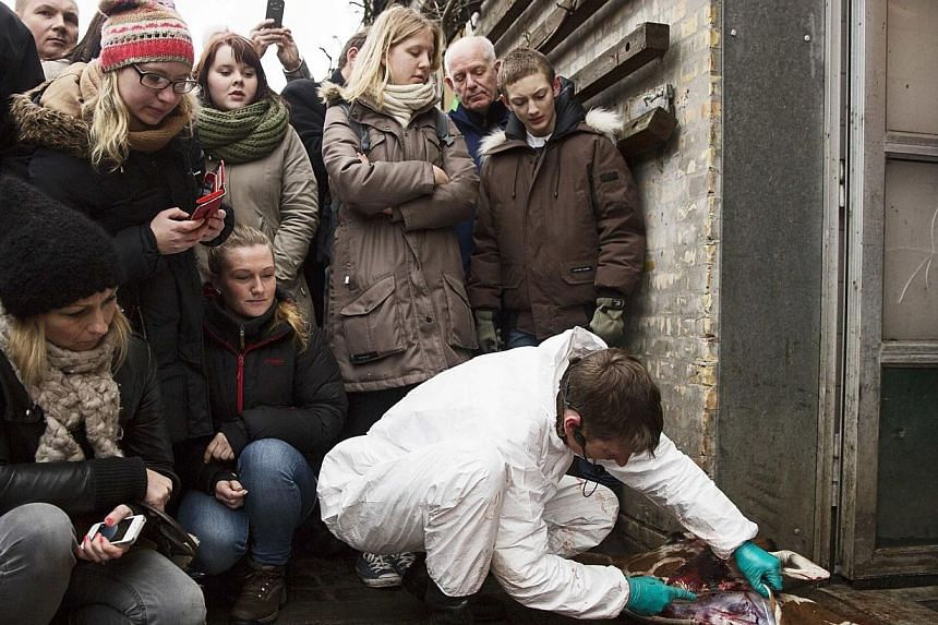 People look on as a veterinarian cuts apart the giraffe Marius after it was killed in Copenhagen Zoo, Feb 9, 2014. -- FILE PHOTO: REUTERS