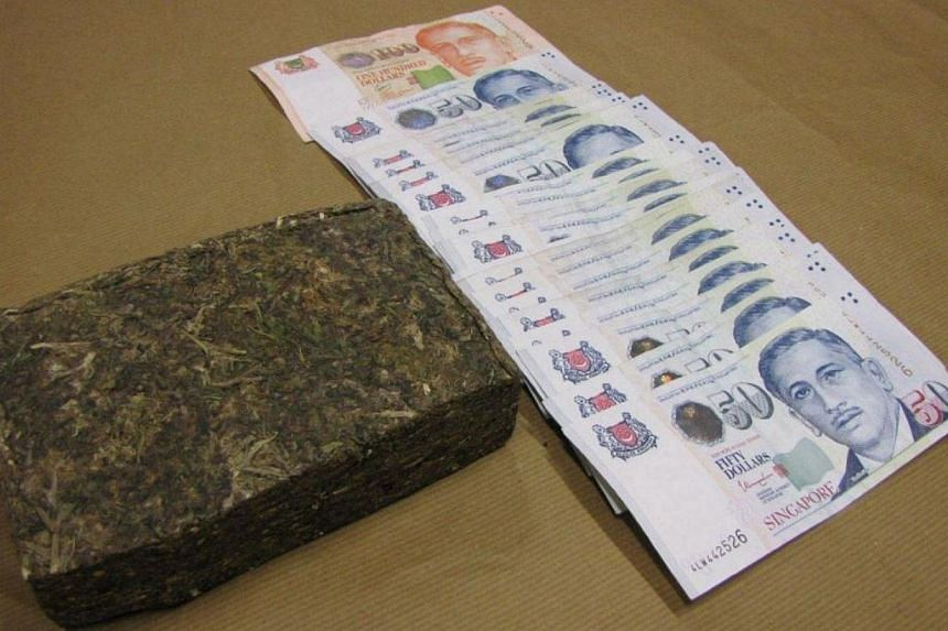 Cannabis and cash seized in a CNB operation at Ang Mo Kio, on Feb 12, 2014. Anti-narcotics officers arrested four men and seized more than $101,000 worth of drugs in two separate drug busts on Wednesday, Feb 12, 2014. -- PHOTO: CENTRAL NARC