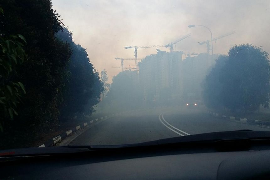A patch of brush that caught fire in Punggol on Saturday, March 1, 2014, a likely result of one of Singapore's longest periods of dry weather. -- PHOTO: STOMP