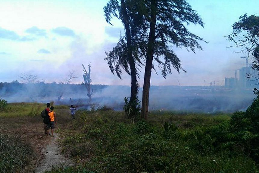 A fire broke out on a patch of open grassland the size of a football field near Punggol Waterway on Saturday, March 1, 2014. --PHOTO: TAN XINGWEN