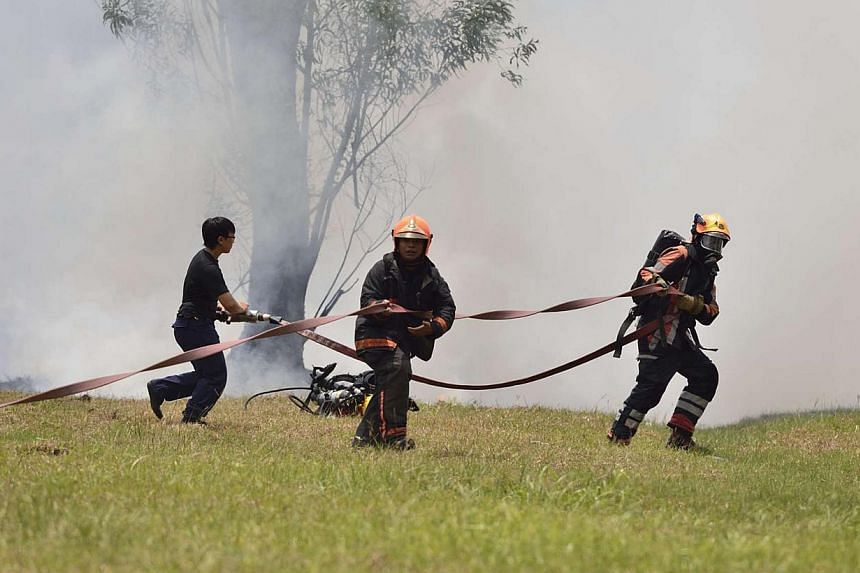 A bush fire in Jurong East, near IMM mall, on Saturday, March 1, 2014. -- PHOTO: STOMP