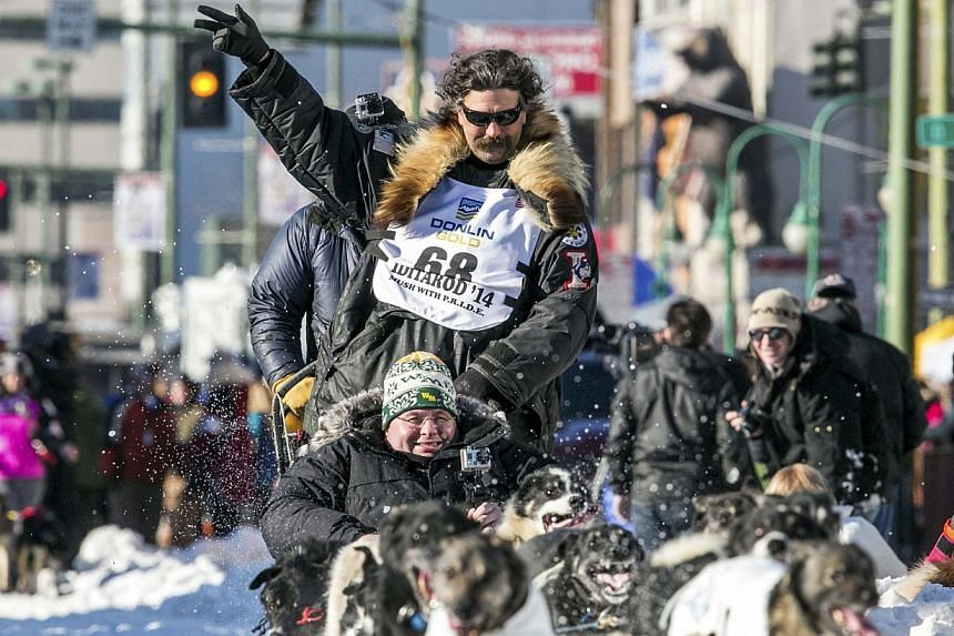 Musher Mike Santos waves to the crowd as he leaves the chute of the ceremonial start to the Iditarod dog sled race in downtown Anchorage, Alaska, on March 1, 2014. -- PHOTO: REUTERS