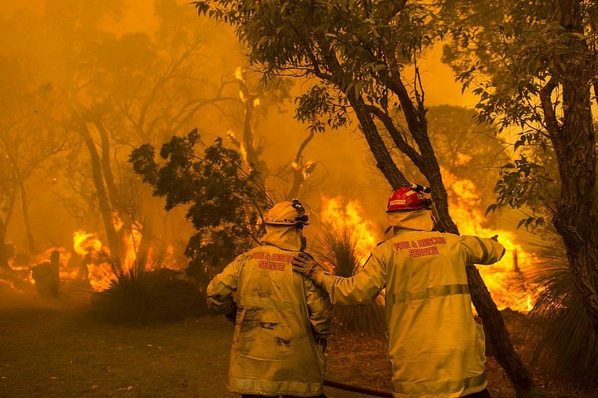 Firefighters battle flames during wildfires in Banjup, a suburb of Perth, Western Australia, on Feb 3, 2014. -- FILE PHOTO: REUTERS