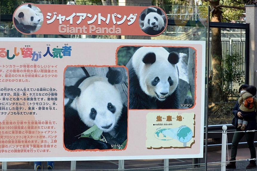 A large poster of giant panda couple is displayed in front of a panda cage at the Ueno zoo in Tokyo on March 4, 2014. -- PHOTO: AFP