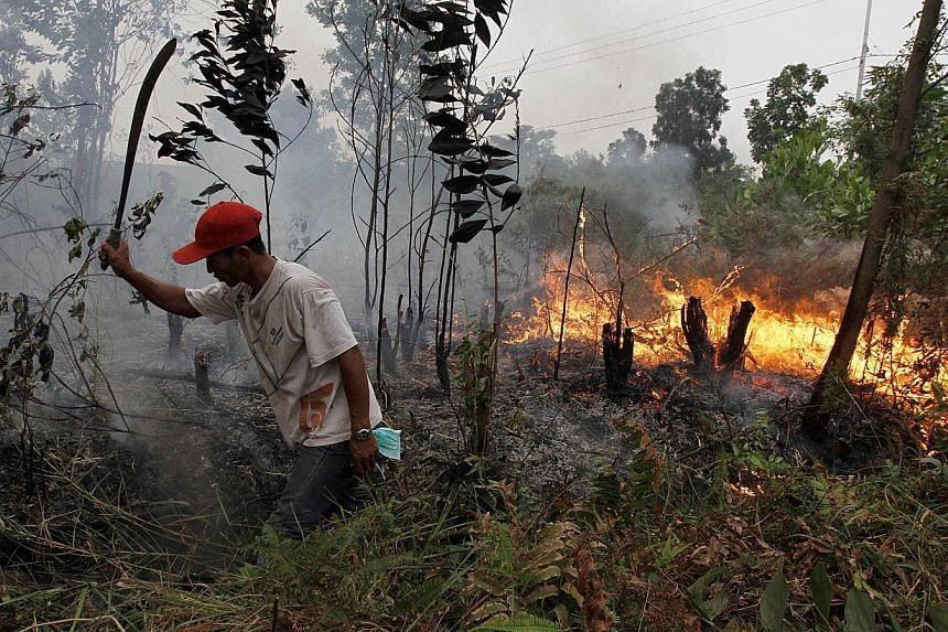 A resident attempts to put out a fire spreading in a plantation area in Dumai district, Riau province located in Sumatra island on March 3, 2014. -- FILE PHOTO: AFP