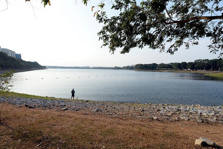 The low water level at Bedok Reservoir on Feb 5, 2014. -- ST FILE PHOTO: AZIZ HUSSIN