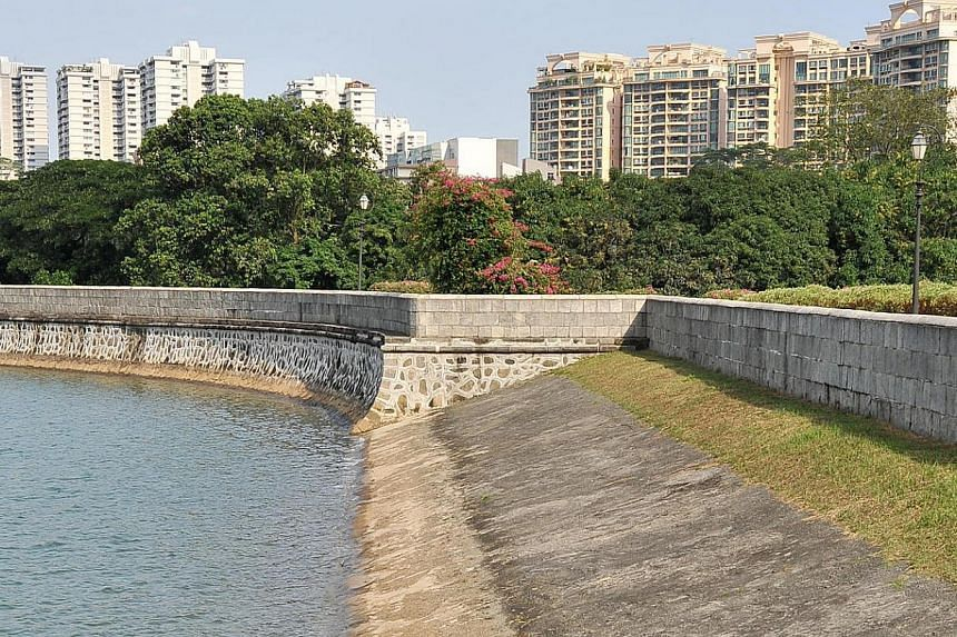 Low water levels seen at MacRitchie Reservoir on Feb 5, 2014. -- ST FILE PHOTO: LIM YAOHUI
