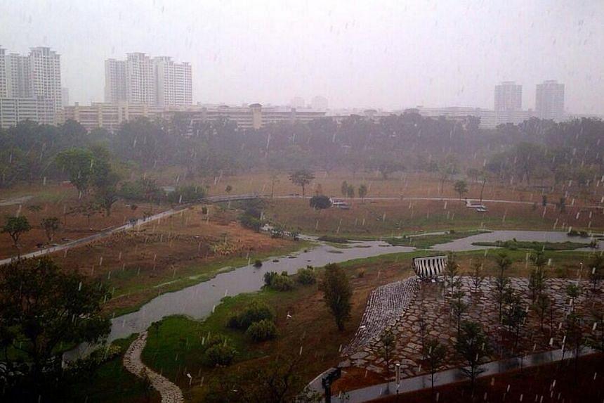Bishan Park. -- PHOTO: SHARON BOEY VIA TWITTER