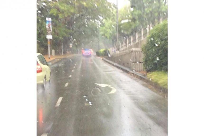 Holland Road. -- PHOTO: JOANNA ASH VIA TWITTER