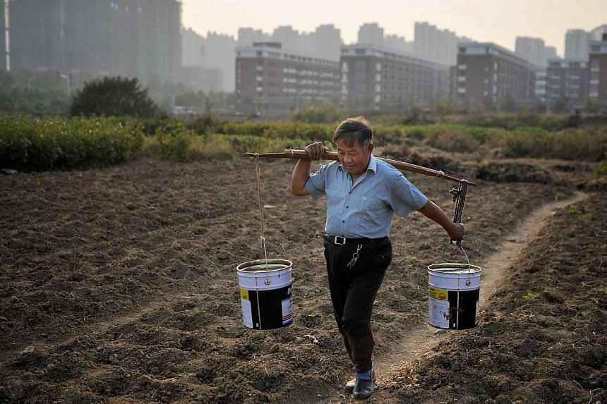 China's environmental authorities have passed a plan to tackle soil pollution as the government becomes increasingly concerned about the risk to food posed by widespread contamination of farmland. -- FILE PHOTO: REUTERS