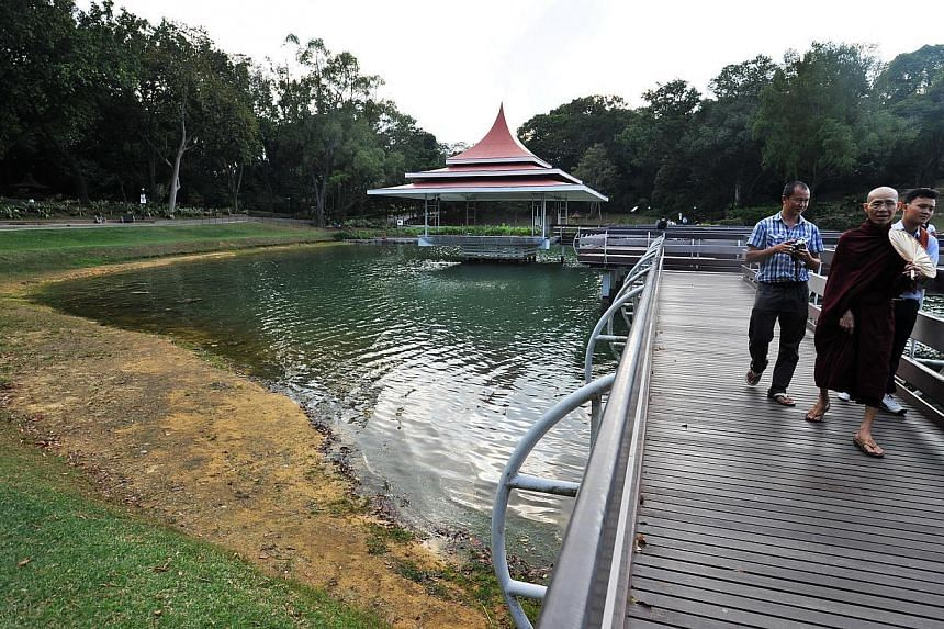 """The contrasting water levels seen at MacRitchie Reservoir yesterday (above) and on Feb 5 (below). After six days of rain, PUB is """"progressively"""" reducing production at the desalination and Newater plants."""