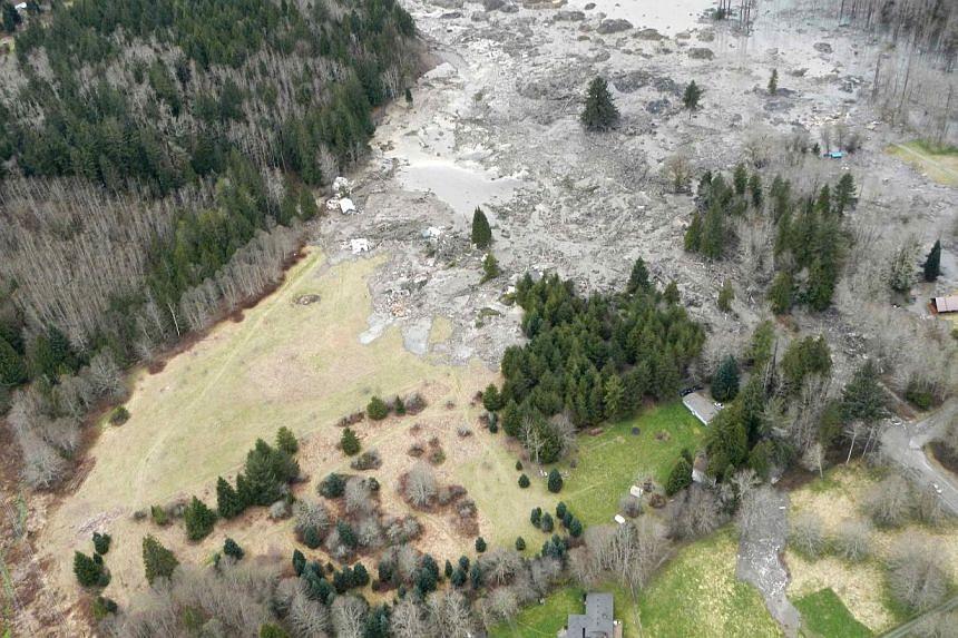 A general view of the area affected by a landslide near State Route 530 is seen in this Washington State Department of Transportation handout picture taken near Oso, Washington, on March 22, 2014. -- PHOTO: REUTERS/WASHINGTON STATE DEPARTMENT OF TRAN