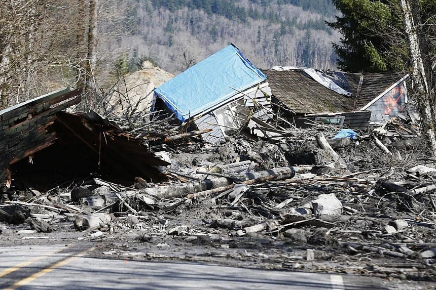 The wall of mud, rocks and trees smashed into the rural town of Oso, northeast of Seattle in the northwestern US state, destroying houses and part of a highway. -- FILE PHOTO: REUTERS