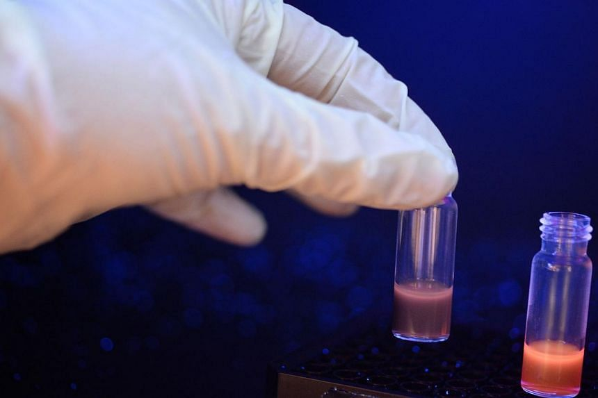 Dr Zhai Daunting, in her 20's, an NUS researcher who was part of a team which developed a flourescent sensor for detecting date rape drug GHB in drinks, demonstrates the colour change under UV light when the sensor is mixed in red wine without GHB (r