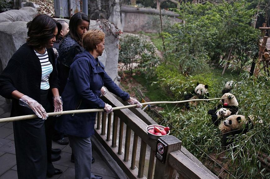 US First Lady Michelle Obama (left) and her mother Marian Robinson (right) feed apple to giant pandas as daughter Malia looks on during their visit at Giant Panda Research Base in Chengdu, Sichuan province, March 26, 2014. -- PHOTO: REUTERS