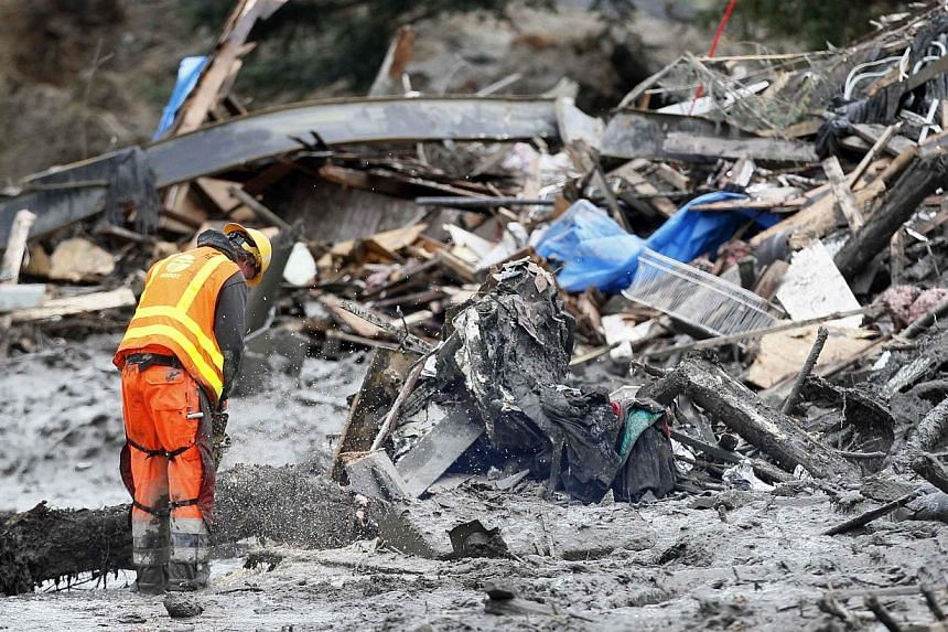 A worker uses a chainsaw to break up a tree in the mudslide near Oso, Washington as rescue efforts continue on March 26, 2014. -- PHOTO: REUTERS