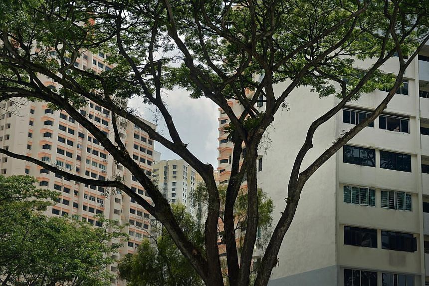 A $500,000 fund will be set up to turn innovative ideas into real solutions to improve HDB living. -- ST FILE PHOTO: KUA CHEE SIONG