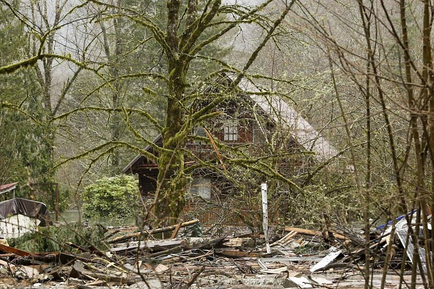 The area near Highway 530 is surrounded by mud and debris as search work continues on , March 29, 2014, where a massive landslide struck Oso near Darrington, Washington.-- PHOTO: REUTERS