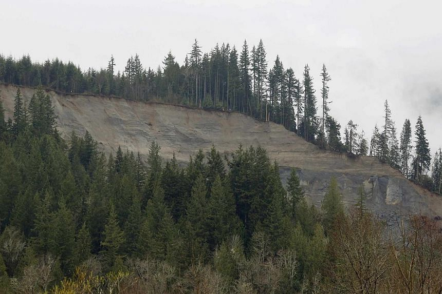 The site of a massive mudslide is seen in Oso, Washington, on March 28, 2014. -- FILE PHOTO: REUTERS