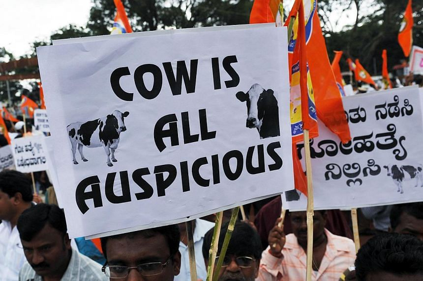 This file photo shows an Indian Hindu activist holds a placard stating 'cow is all auspicious' during a demonstration in support of the cow slaughter ban bill passed in the Karnataka state Legislative Assembly in Bangalore.Indian election front