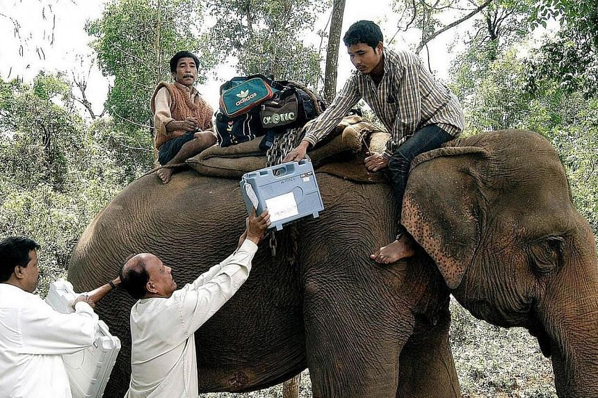 In this photograph taken on April 19, 2004, Indian election officials load electronic voting machines (EVM) on a elephant leaving for polling stations of the Guwahati constituency on the eve of national elections in Nortap, Assam state. Whether