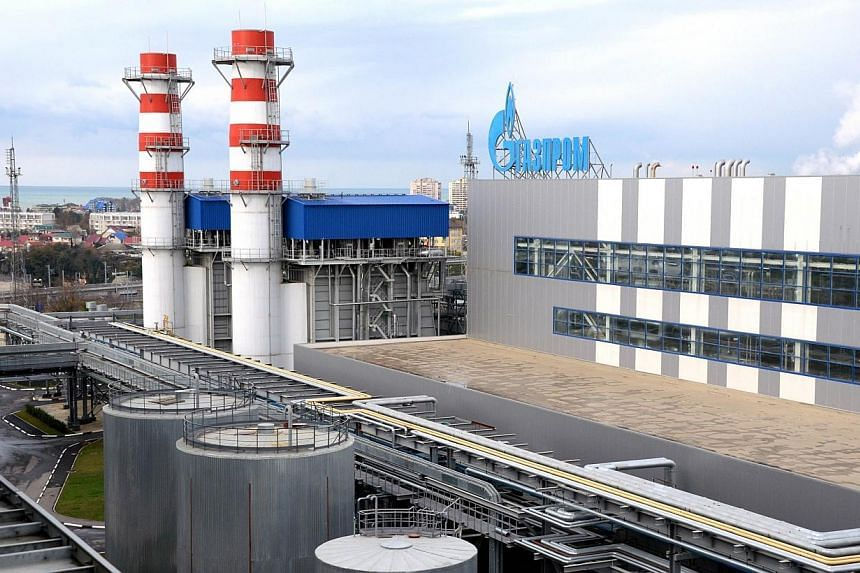 This picture taken on Nov 30, 2013 shows the Russian gas giant Gazprom's recently built Adler thermal power plant in the Russian Black Sea resort of Sochi. Russian natural gas producer Gazprom said on Tuesday Ukraine had failed to pay for its Ma