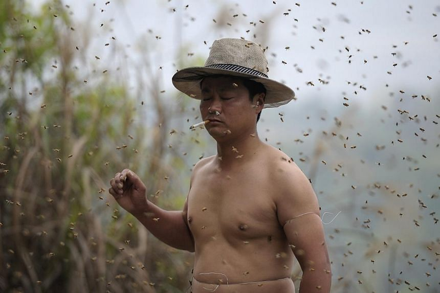 She Ping, a 34-year-old beekeeper, smokes a cigarette as he gets ready for an attempt to cover his body with bees in Chongqing municipality, April 9, 2014.-- PHOTO: REUTERS