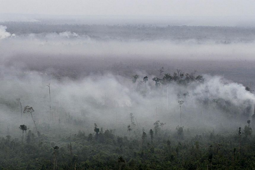 Smoke rising from cleared forest land in Pelalawan Regency, Riau province. Sustainable agricultural practices and law enforcement are needed to stop the burning of forests, said PM Lee. -- PHOTO: AGENCE FRANCE-PRESSE
