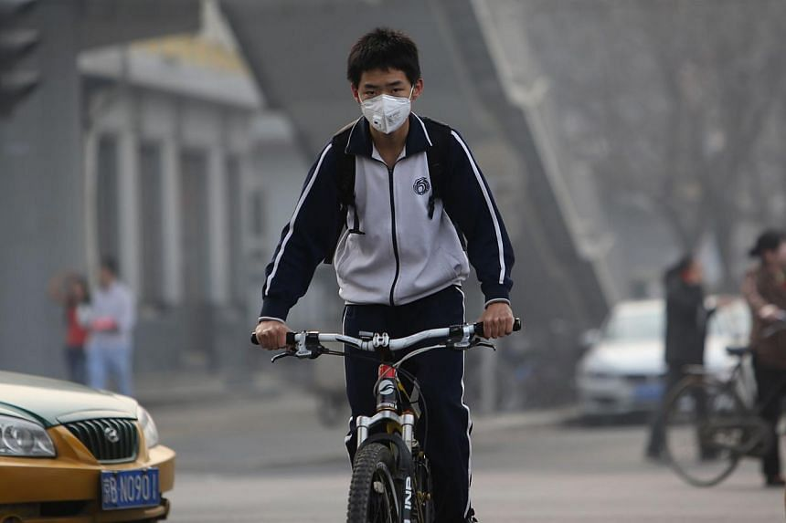 A boy wearing a mask in Beijing on March 26, 2014. China may revive 2008 Beijing Olympics-style air pollution controls when it holds a meeting of Asia-Pacific leaders in the often smog-shrouded capital in November. -- FILE PHOTO: AFP