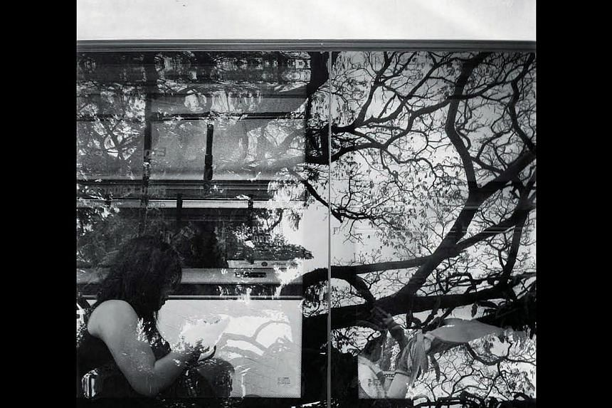 A passenger sitting on a bus amid the soft reflections of trees along Outram Road. -- ST PHOTO: KUA CHEE SIONG