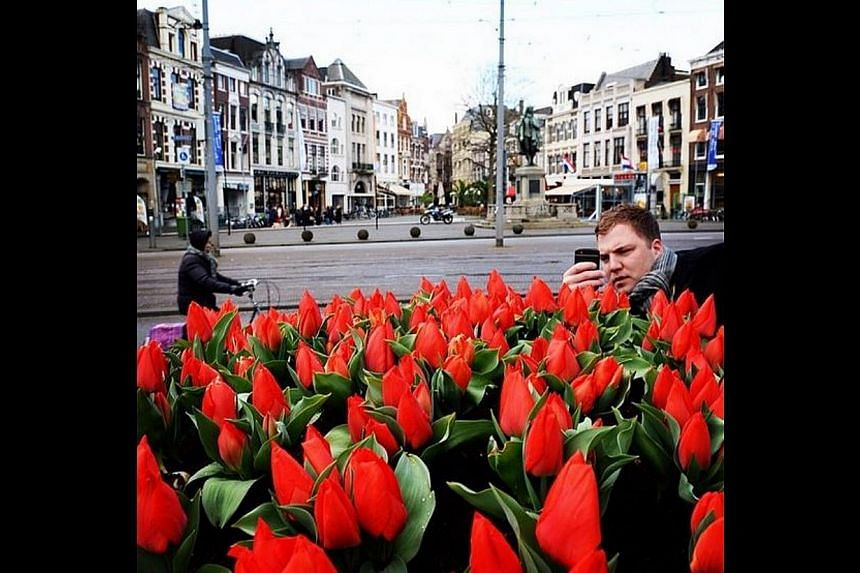 A man takes a photo of Orange Sherpa tulips at the city centre of The Hague, Netherlands. The flowers were specially grown for the Nuclear Security Summit (NSS) which The Hague is hosting and it is the city's symbol of peace and justice. -- ST PHOTO: