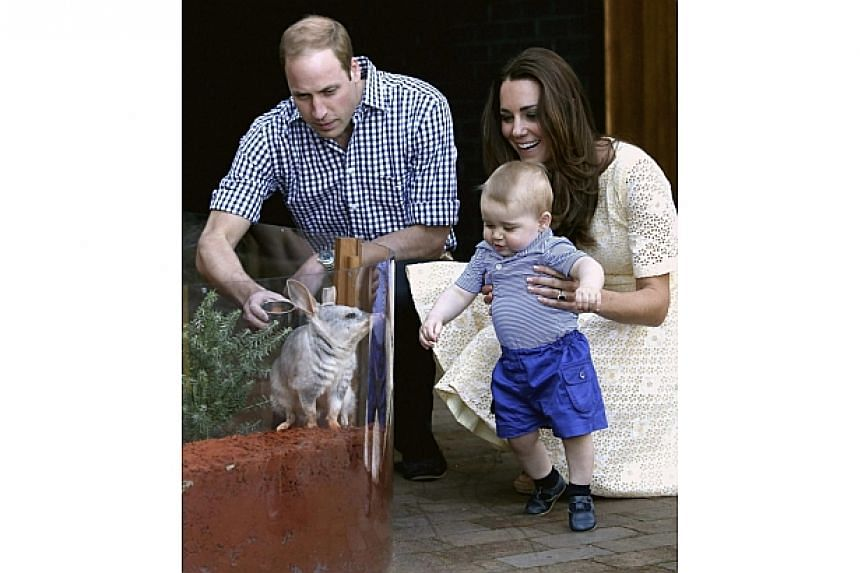Britain's Catherine, Duchess of Cambridge, holds Prince George next to Prince William as they meet a Bilby which has been named after the young prince at Taronga Zoo in Sydney on April 20, 2014. -- PHOTO: REUTERS