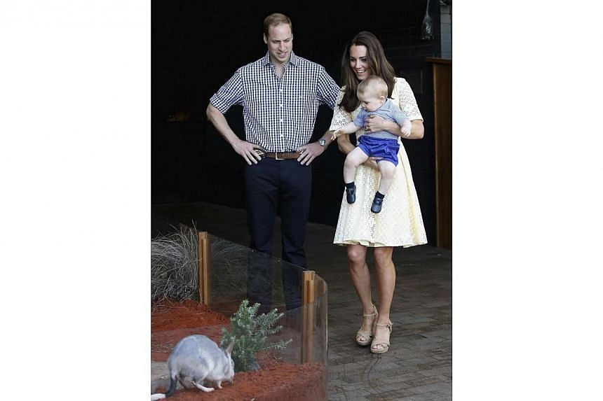 Britain's Prince William and his wife Catherine, the Duchess of Cambridge, watch as their son Prince George looks at a Bilby which has been named after him at Taronga Zoo in Sydney April 20, 2014. -- PHOTO: REUTERS
